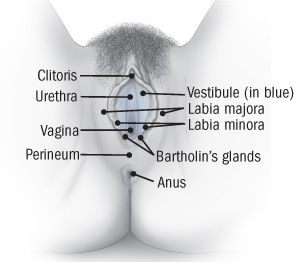 Itching vaginal of causes external