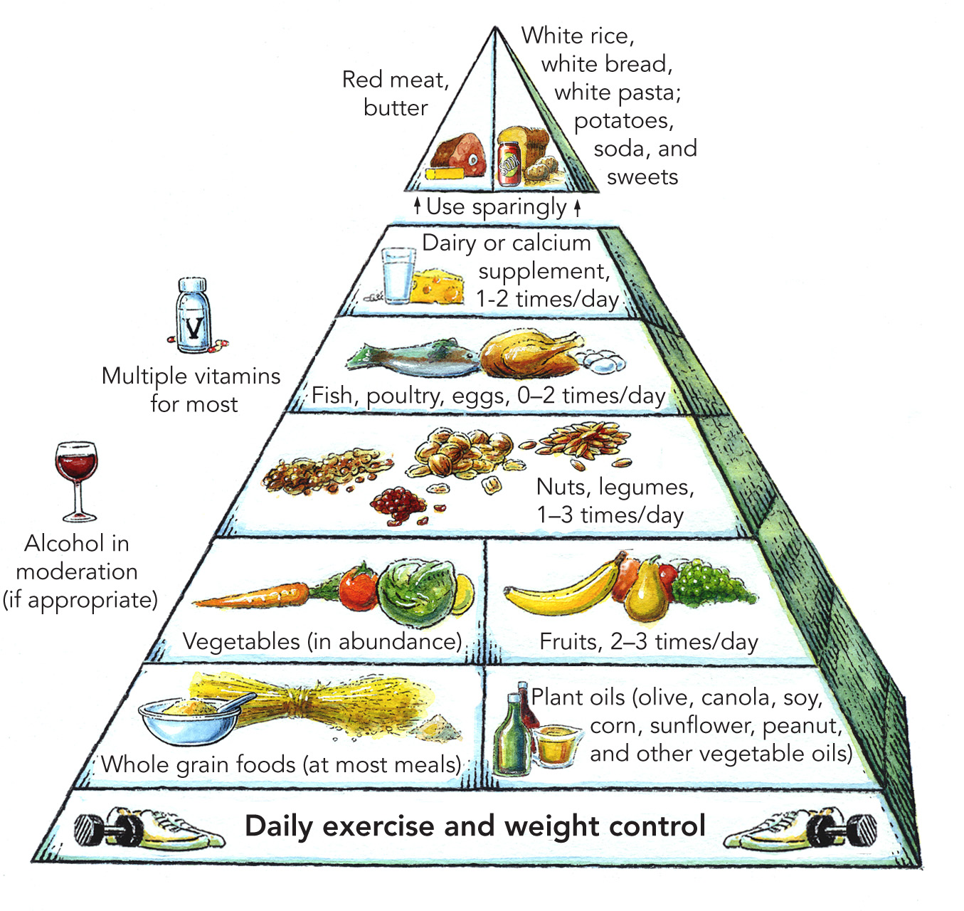 Problems with the Pyramid - Harvard Health