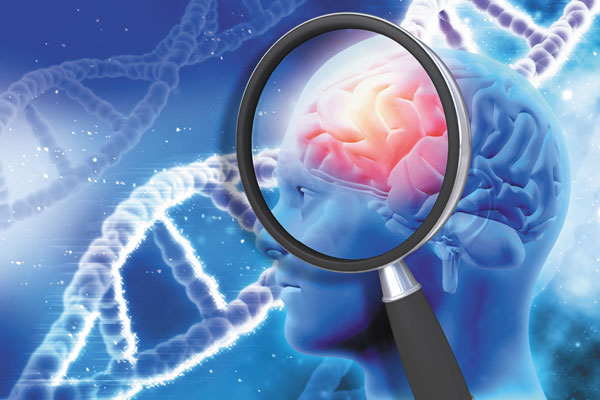 brain genetic link between alzheimer's and heart disease