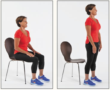 Image result for sit to stand exercise