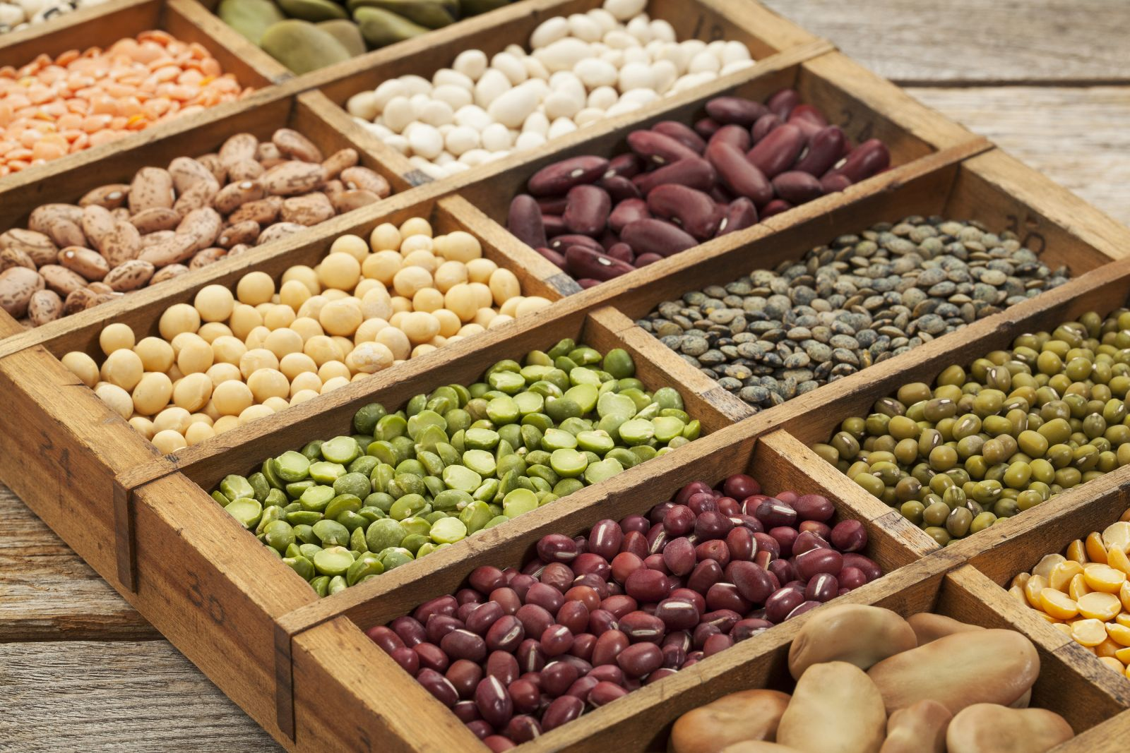 Souvent Plant-based diet: Nuts, seeds, and legumes can help get you there  OJ58