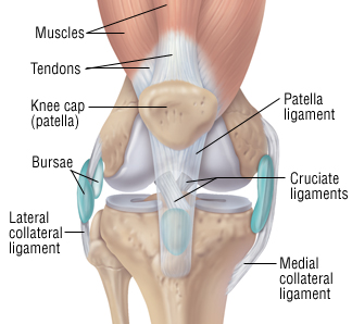 Home Care For Twisted Knee