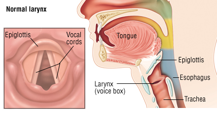 How To Tighten Your Vocal Cords